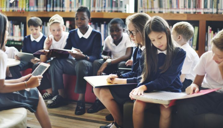 Private Schools Tend To Be Less Diverse